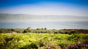 THE SEA OF GALILEE © Kristina Afanasyeva | Dreamstime.com